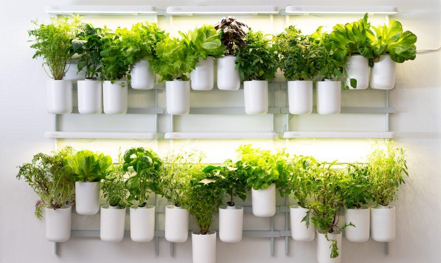 Smart Garden-Systeme oder wie das angesagte Indoor-Gardening funktioniert