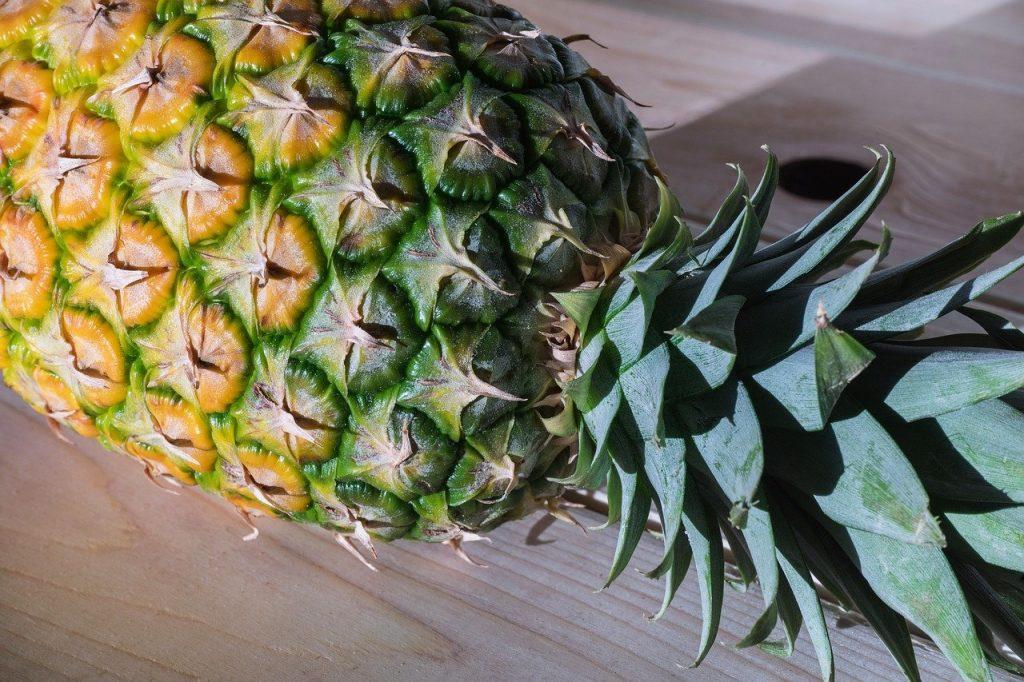 Ananas selber züchten aus der Frucht oder dem Blattwerk