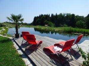Schwimmteich im Garten: Wissenswertes und Kosten